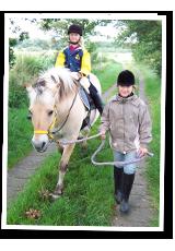 Pferd und Mensch bilden ein Team
